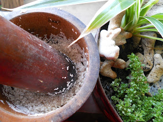 mortar and pestle for making fertilizer out of egg shells